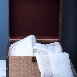 ארגז מזוודה לאחסון ונוי