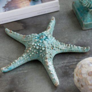 כוכב ים טורקיז