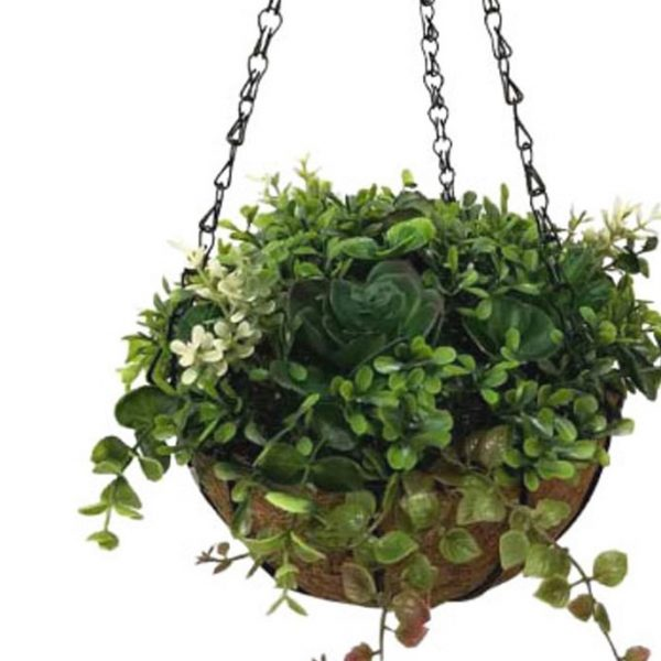 עציץ תלייה עלים ירוקים