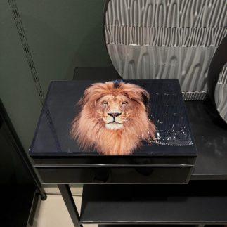 קופסת תכשיטים – LION בשלושה דגמים