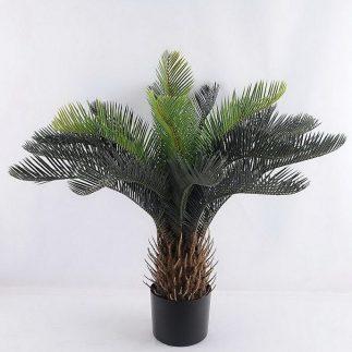 עץ דקל – 168500