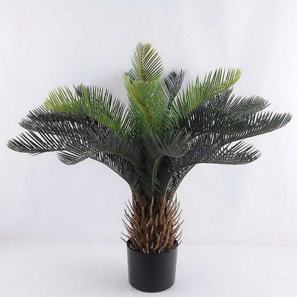 עץ דקל - 168500