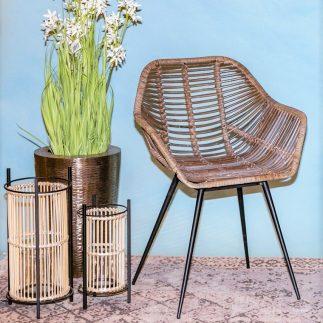 כיסא ראטן – MAMA