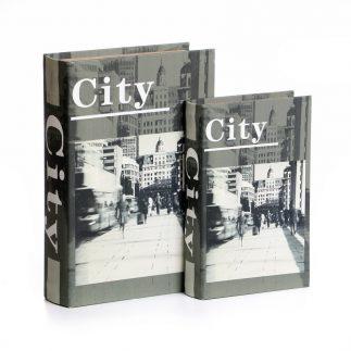 זוג ספרים לאחסון ונוי – CITY