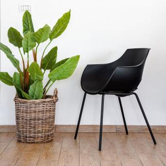 כיסא אוכל שחור מעוצב – SUNNY