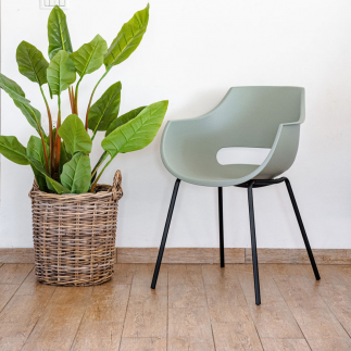 כיסא אוכל ירוק – SUNNY