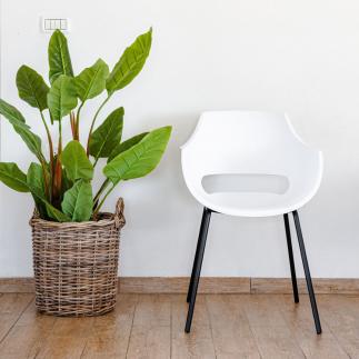כיסא אוכל מודרני לבן  – SUNNY
